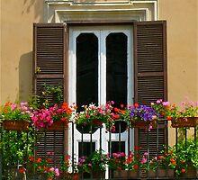 Happy Italian window in Piazza Navona by JessicaHaley
