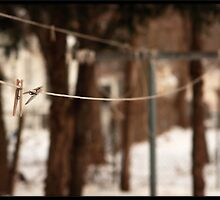 The Clothesline by Rdestruction