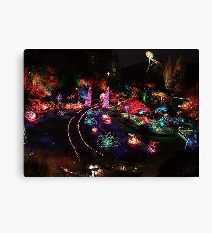 Night in the Sunken Garden(2) Canvas Print