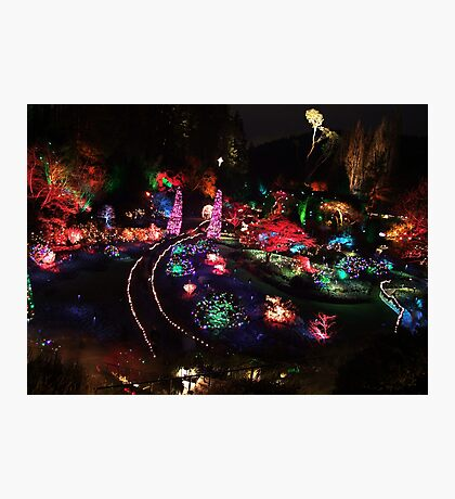 Night in the Sunken Garden(2) Photographic Print