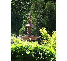 Botanic Fountain Photographic Print