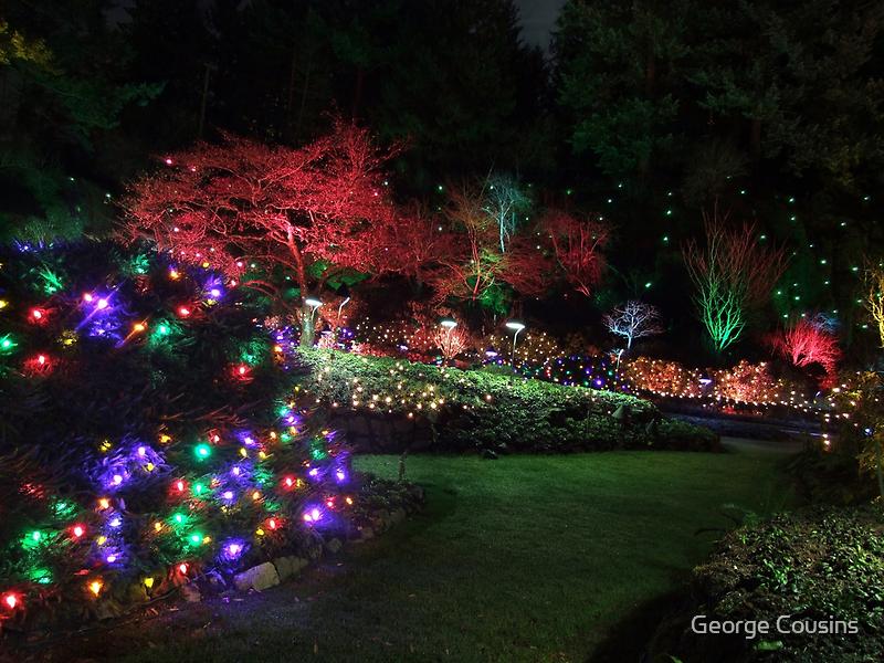 Night in the Sunken Garden (4) by George Cousins