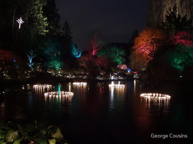 Night in the Sunken Garden (5) by George Cousins