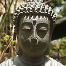 Statue in my Backyard by S S