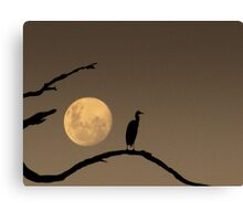 The Heron and the Moon Canvas Print