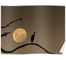 The Heron and the Moon Poster