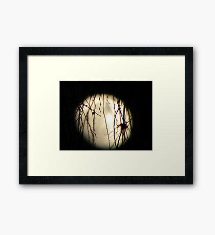Disney moonlight Framed Print