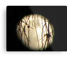 Disney moonlight Metal Print