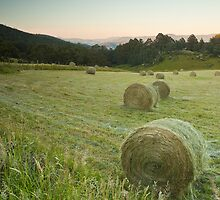Hay Bales at Vinces Saddle by Chris Cobern
