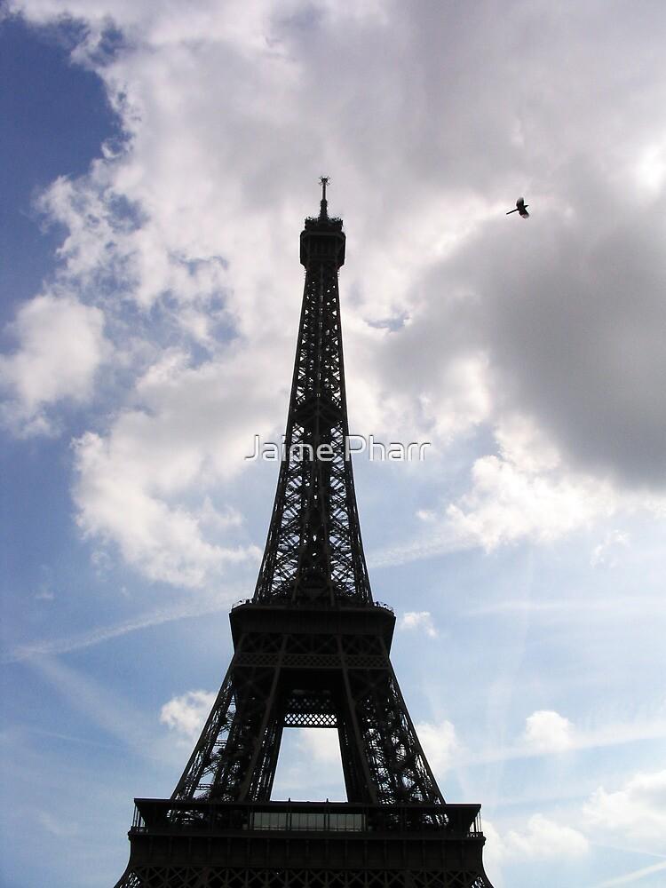 Eiffel Tower with bird by Jaime Pharr