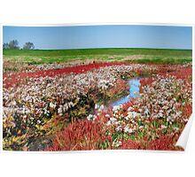Wetlands 4 Poster