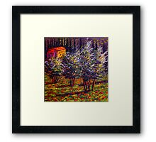 Tuscany Poppies in the Olive Grove Framed Print