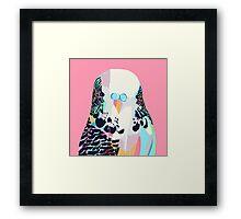 Budgerigar Pink Framed Print
