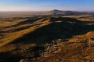 Mt Balfour & The Norfolk Range, Tarkine Landscape, NW Tasmania by Garth Smith