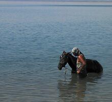 The horse whisperer by Hélène David-Cuny