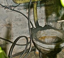 The Black Toilet - (Abandoned Building) by welshie