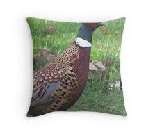 Garden cock pheasant Throw Pillow