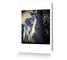 Beachy Winter Light Sand Greeting Card