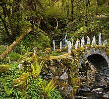 The Fairy Bridge, Scotland by Scott Moncrieff