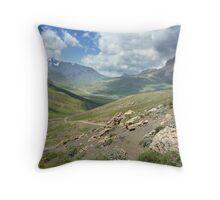 a large Uzbekistan landscape Throw Pillow