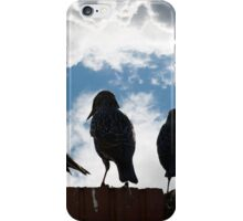 silhouette of starlings on a wall iPhone Case/Skin