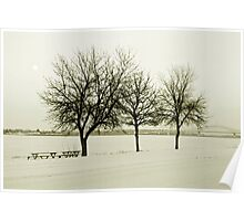 Cold December Day Poster