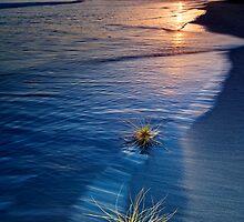 Dawn 01.01.2010 by Ken Wright