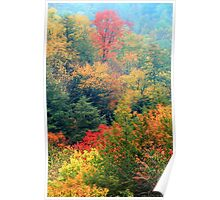 TREES BELOW THE CHIMNEY TOPS,AUTUMN Poster