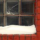 hole in window by Lynne Prestebak