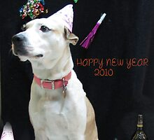HAPPY NEW YEAR 2010 by gabbielizzie