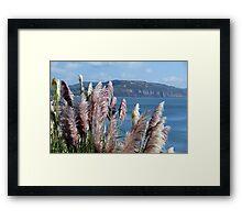 Pampas Grasses ~ Lyme Regis Framed Print
