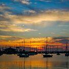 Sailboats at Sunset - Tampa, Florida by rjhphoto