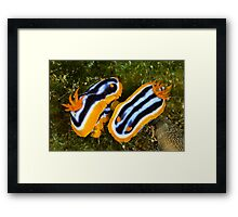 Jim Gooding Print Request #1 Framed Print