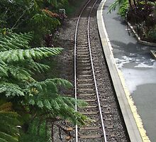 Kuranda rail  - Kuranda train station, Far North Queensland by Carissa Hubrechsen