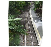 Kuranda rail  - Kuranda train station, Far North Queensland Poster