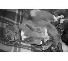 Baby Boy Photographic Print
