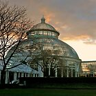 Botanical Gardens At Dusk - Bronx, New York © 2009  by Jack McCabe
