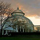 Botanical Gardens At Dusk - Bronx, New York © 2009  by Jack McCabe