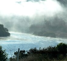 Fog rolling in on the road to Mendocino by meredith175