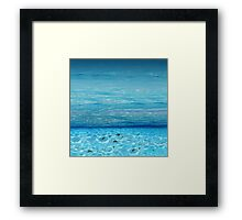 Topical Underwater Fauna Framed Print
