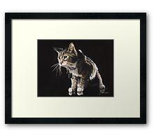 """Truffles"" Watercolor Framed Print"