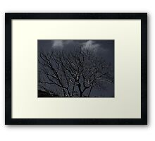 cursed tree Framed Print