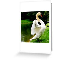 Goosing around... Greeting Card