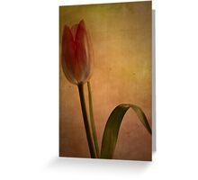 Looking forward to spring Greeting Card