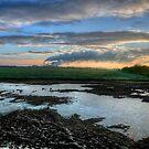 """""""A New Dawn - Our First Sunrise of 2010"""" by Bradley Shawn  Rabon"""