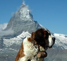 Has anyone seen the Matterhorn? by Silvia McCormack