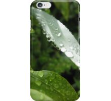 perfect drops of rain iPhone Case/Skin