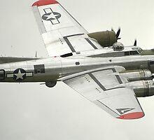 B-17 Yankee Lady by Steven Squizzero