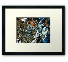 538 Framed Print