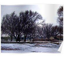 Winter Pond Poster